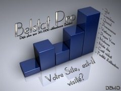 BelStat Statistics - Your Site Counts